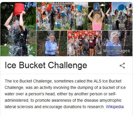 Ice Bucket Challenge, activismo en las redes sociales