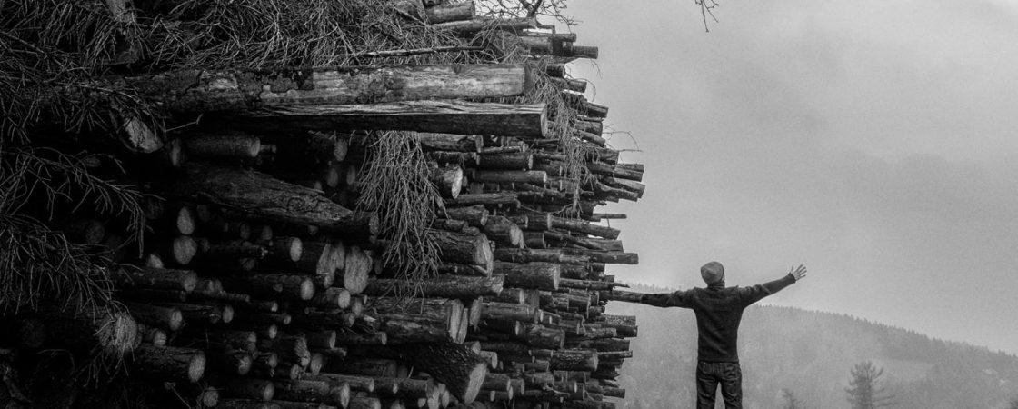 Daño ambiental de la industria del papel