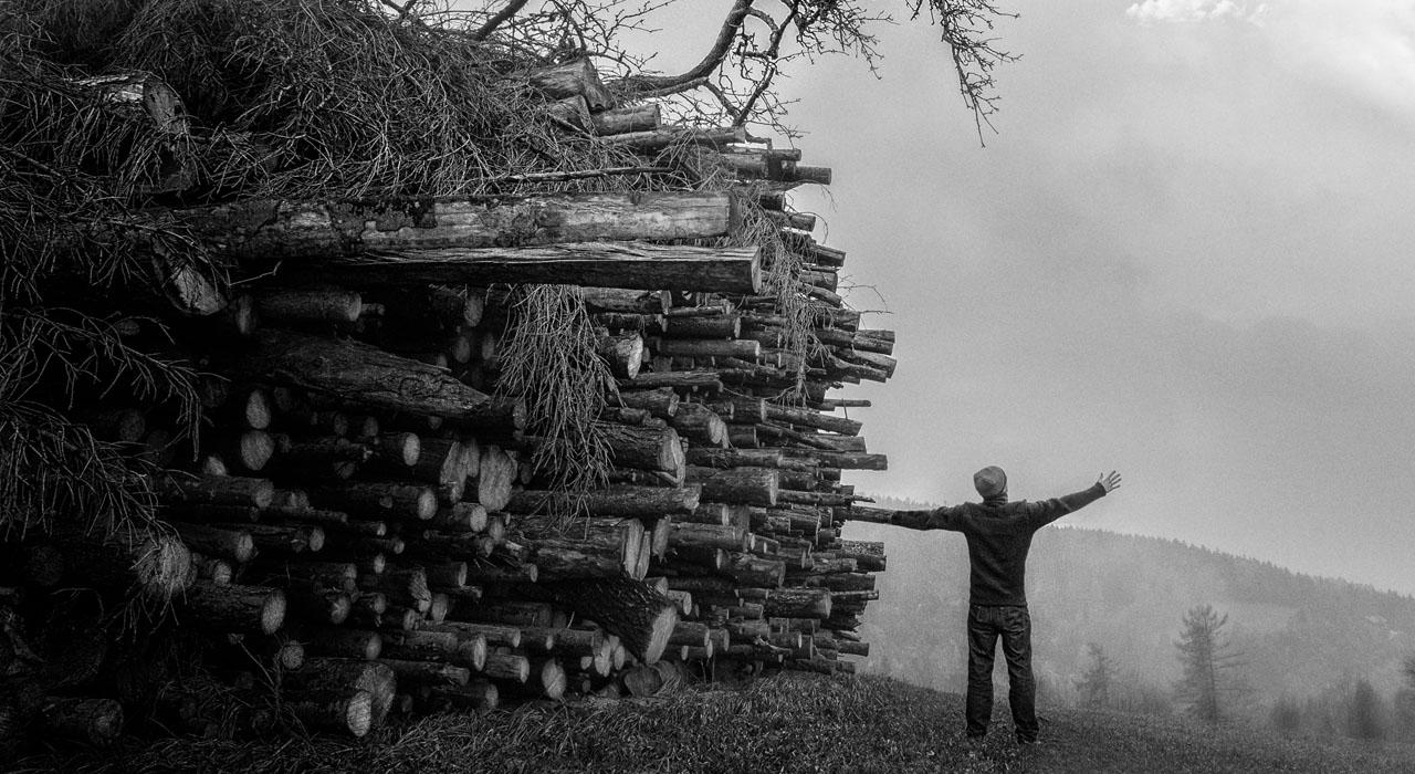 Daño ambiental de la industria del papel: lo que no sabías