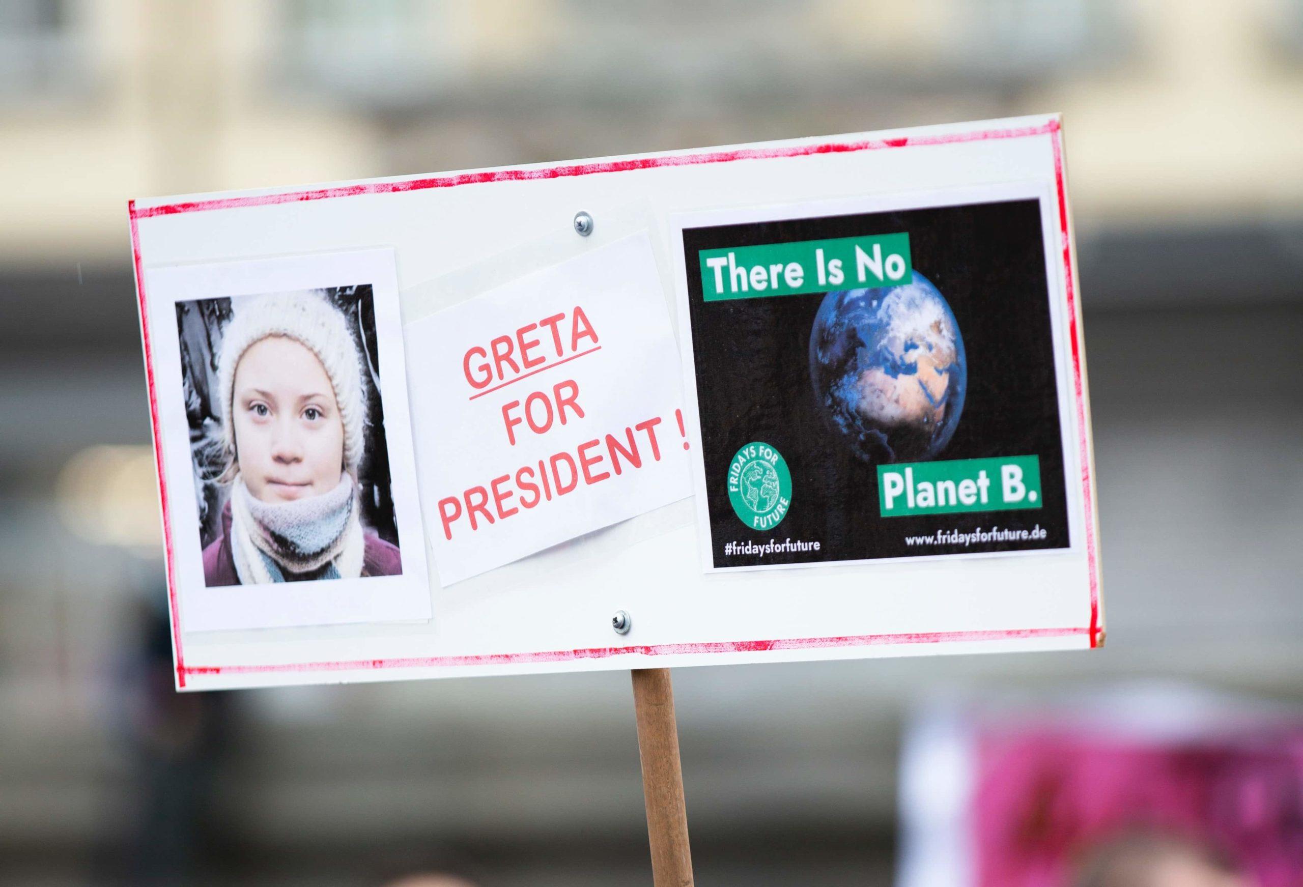 Greta Thunberg and the million euros for the Amazon